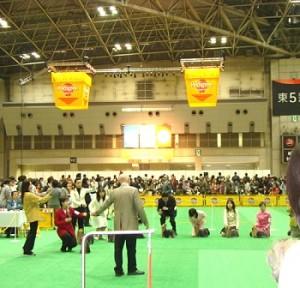 アジアインターナショナルドッグショー2008