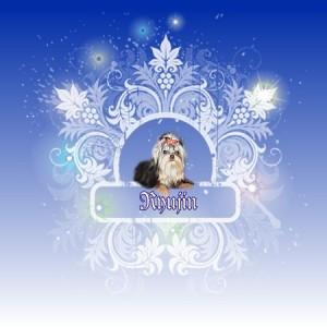 Ryujin of Little Lover JP:ヨーキー