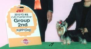 埼玉インター:puppy ♂ G2