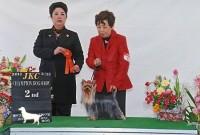 2012.3.24神戸フィールドファミリードッククラブ展:Sujyaku