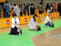 FCIジャパンインターナショナルドッグショー2010