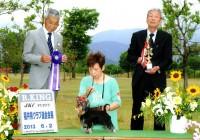2013.6.1福井県クラブ連合会展:Hakuto