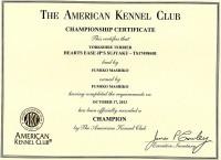 AKC チャンピオン証書