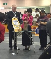 JDF2015 Hakuto BISS!