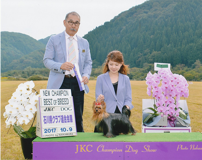 JKC.CH 『Goroumaru』チャンピオン完成!!